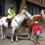 ミレニアム・ブリッジのそばには騎馬警官が。子どもが鼻先を撫でてもおとなしくしていました。