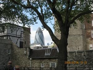新旧対比? ロンドン塔の建物の間からガーキンが